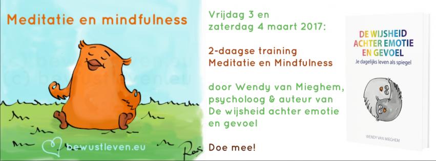 meditatie en mindfulness training - bewustleven.eu