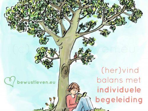 individuele begeleiding - bewustleven.eu
