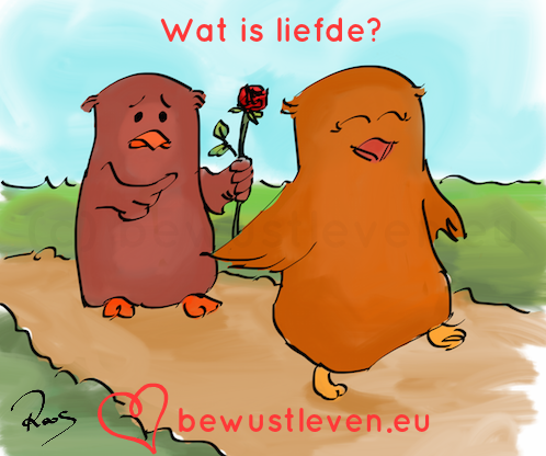 Wat is liefde?