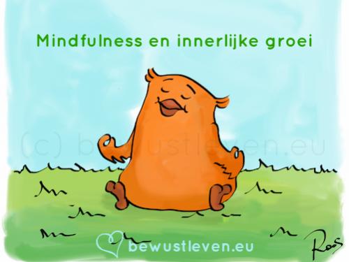 mindfulness en innerlijke groei - bewustleven.eu