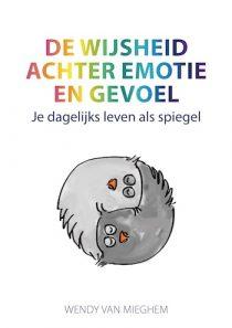 De wijsheid achter emotie en gevoel e-book
