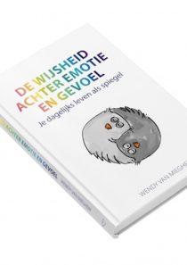 Boek 'De wijsheid achter emotie en gevoel'
