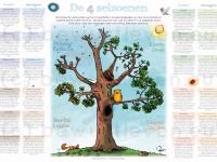 Poster vier seizoenen en zeven basisbehoeften - bewustleven.eu
