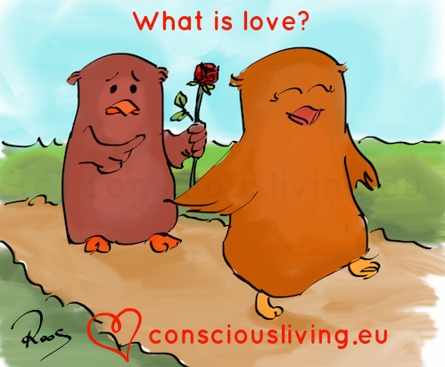 What is love? And what can you do to experience love in your
