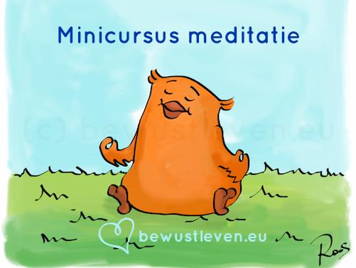Minicursus meditatie - bewustleven.eu