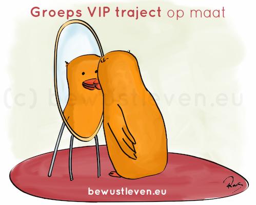 Groeps VIP traject op maat - bewustleven.eu