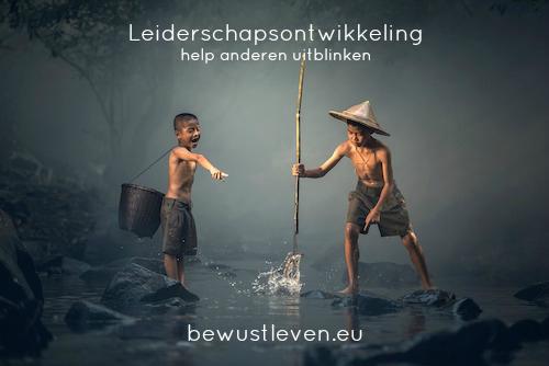 Leiderschapsontwikkeling - bewustleven.eu