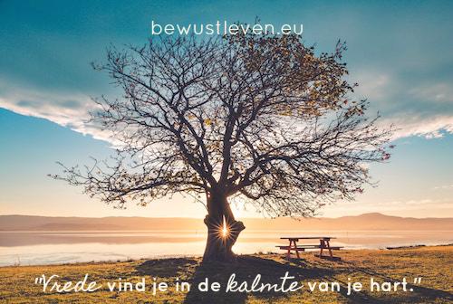 Vredesmeditatie - Wendyvanmieghem.nl