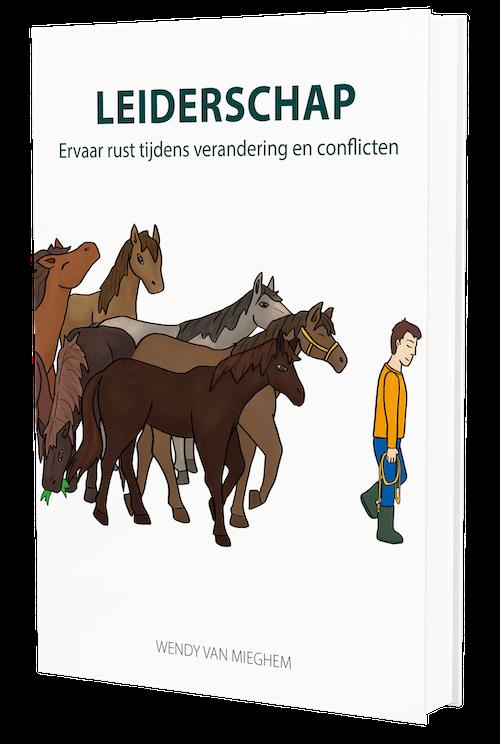Psychologieboeken.eu handboek leiderschap