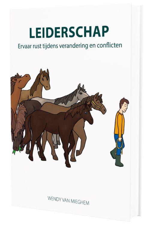 Handboek Leiderschap - Psychologieboeken.eu