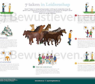 Psychologieboeken.eu poster leiderschap