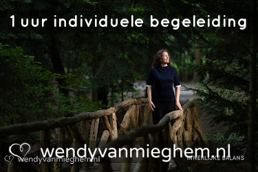 1 uur individuele begeleiding - Wendyvanmieghem.nl