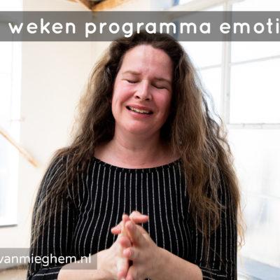 14 weken programma emoties - psycholoog Wendy van Mieghem