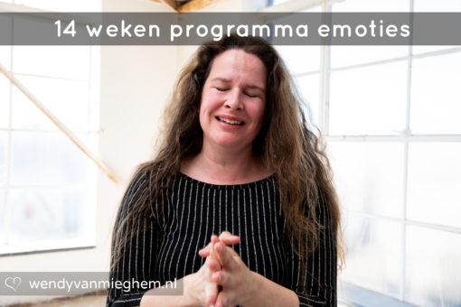 Emoties 14 weken programma - psycholoog Wendy van Mieghem