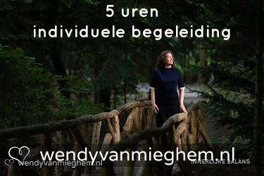 5 uren individuele begeleiding - Wendyvanmieghem.nl