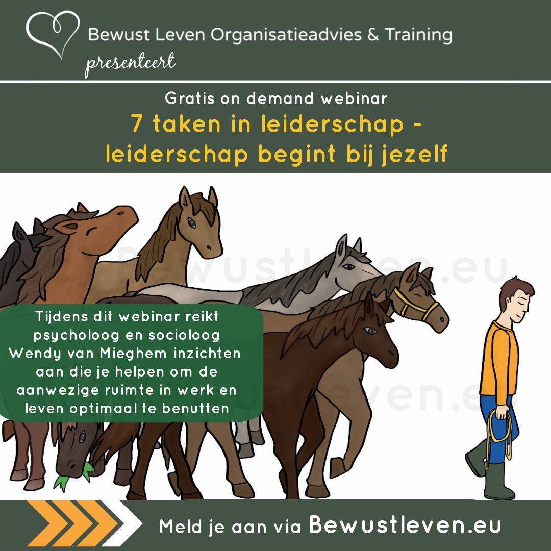 7 taken in leiderschap - Bewustleven.eu | Psychologieboeken.eu