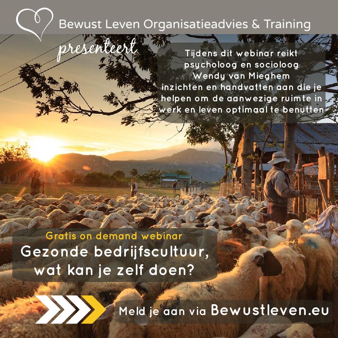 Gezonde bedrijfscultuur on demand - Bewustleven.eu
