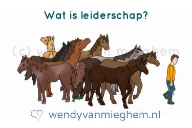 Wat is leiderschap? - Wendyvanmieghem.nl